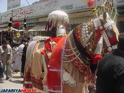 Shaa'er al hussaini - Zuljinnah